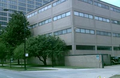 United African Organization - Chicago, IL