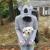 Koalafied Pet Care