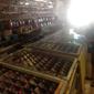 Savy Stores - Los Angeles, CA. Yugioh cards