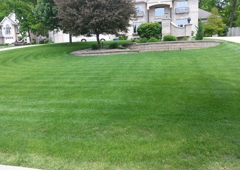 Hedgehog Yard & Garden LLC