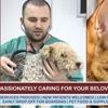 Bartow Animal Care Hospital