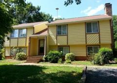 Ameri Pro Paint & Restoration - Charlotte, NC