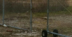 Fantasy Island Child Daycare - Jonesboro, AR