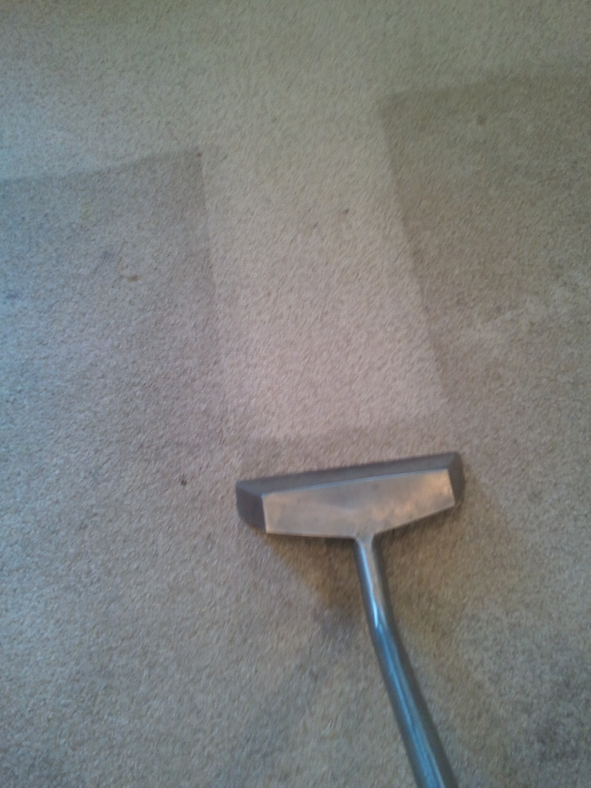 first impressions carpet u0026 upholstery cleaning yp com
