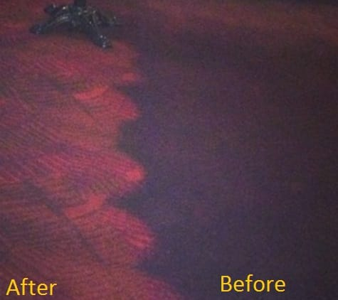 Office Carpet Before & After