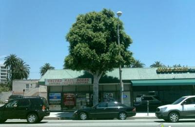Malibu Pacific House & Window - Beverly Hills, CA