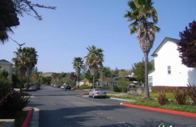 Avelina - Fremont, CA