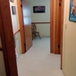 Mt Comfort Animal Hospital - Greenfield, IN