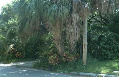 Kimura Fine Art Restoration - Tampa, FL