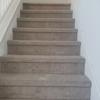 Castillos Carpet Cleaning & Pro Steamers