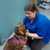 Sykesville Veterinary Clinic