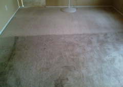 Element Carpet Cleaning - Peoria, AZ