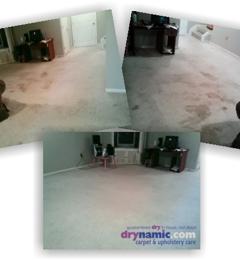 Drynamic Carpet & Upholstery Care - Laurel, MD