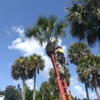 Craig Redwine's Tree Service
