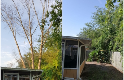 American Tree Surgeons - Green Cove Springs, FL. Before and after