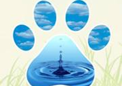 Heavenly Paws Pet Aquamation - Norcross, GA