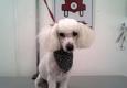Doggy Wash Dog Grooming - el paso, TX