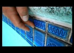 Handyman Landscape & Maintenance - west covina, CA. POOL TILE REPAIR