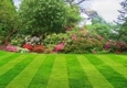 L & T Landscaping & Tree Service - Irving, TX