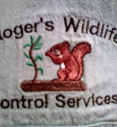 Roger's Wildlife Control - Bristol, TN