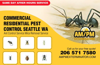 Ampm Exterminators Seattle - Seattle, WA. Pest control near me