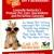 Paws Pet Care Pet Sitting & Dog Walking