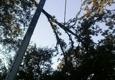 Affordable Carolina Tree Service - Gaston, SC