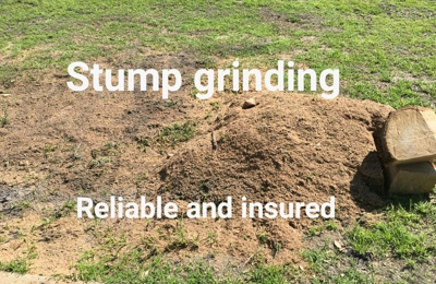 Low-cost stump grinding inc. - Bunnell, FL
