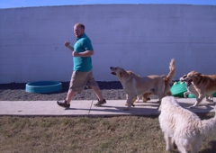 Best Friends Pet Care - San Diego, CA