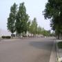 Alameda Environmental Health