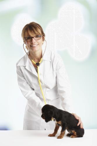 Pet Care5