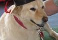 Daddy Dog Care Inc - Mundelein, IL