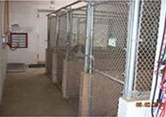 Stafford Animal Hospital - Stafford, VA