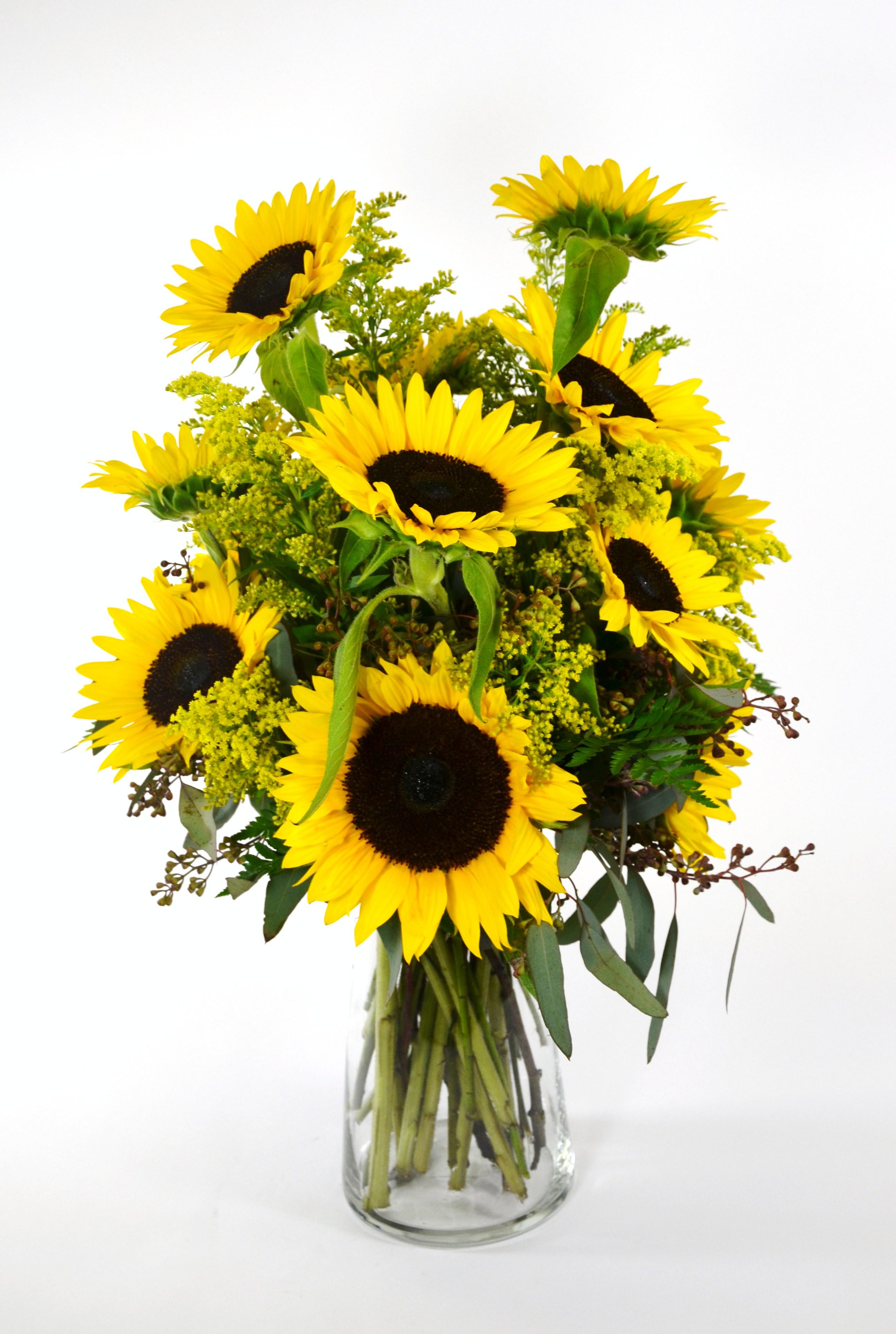 Mcshan Florist Inc 10311 Garland Rd Dallas Tx 75218