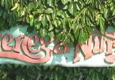 La Cienega Nursery - West Hollywood, CA