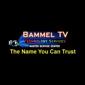 Bammel TV Technology Services - Houston, TX