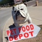Pet Food Depot - Phoenix, AZ