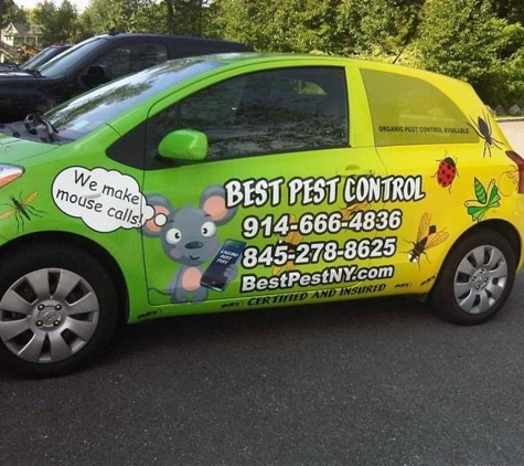 Best Pest Control - Greenwich, CT