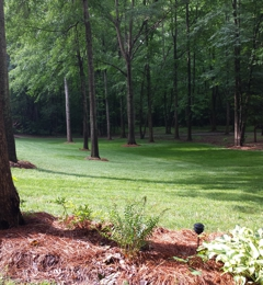 Rds Lawn Care Services - Mount Holly, NC