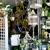 Bloomingdays flower shop