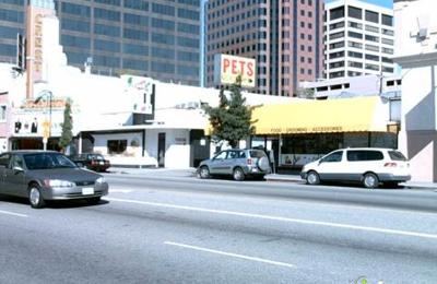 Value Vet - Los Angeles, CA