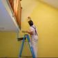DV Painting - San Antonio, TX