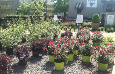 Photos 1 Southern Nurseries