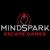 Mindspark Escape Games Tempe