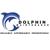 Dolphin Maintenance LLC