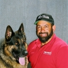 Pro-Train-Service Dog Training ONLY