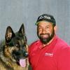 Pro-Train - Service Dog Training