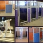 Caring Hands Veterinary Hospital - Thornton, CO