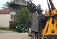 Arborist Care Tree Service - Columbus, OH