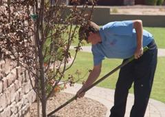 Arizona's Best Choice Pest & Termite Services - Mesa, AZ